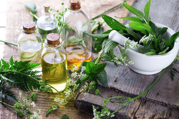 organic perfume simple easy herbal perfume recipes to making divine smelling fragrances