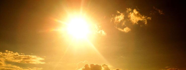 sunlight for energy
