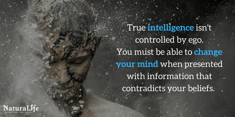 The origins of true intelligence. A quote by Naturalife