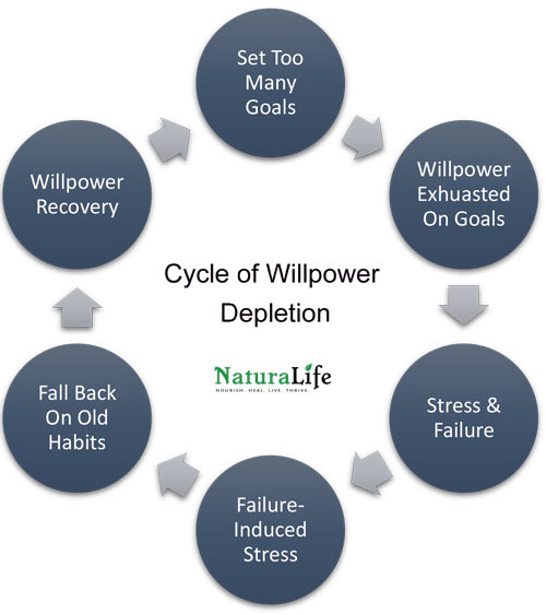 the cycle of willpower depletion
