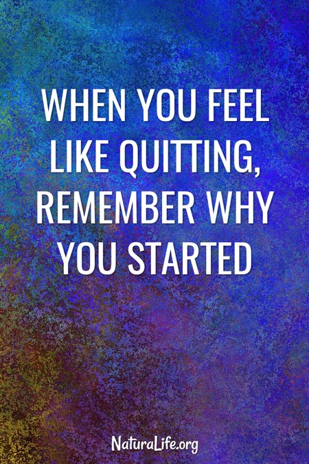 """""""When You Feel Like Quitting, Remember Why You Started."""" Image quote."""