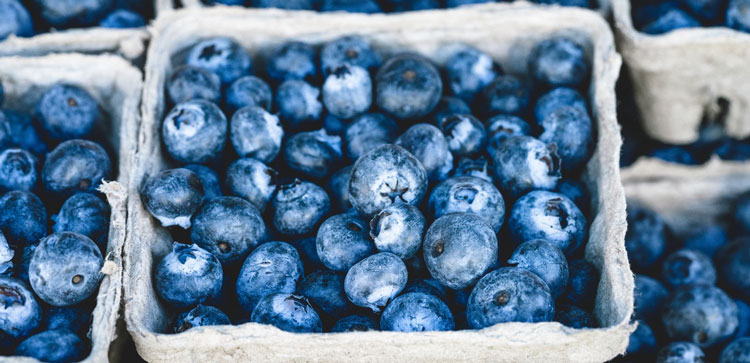 organic blueberries for a healthy snack